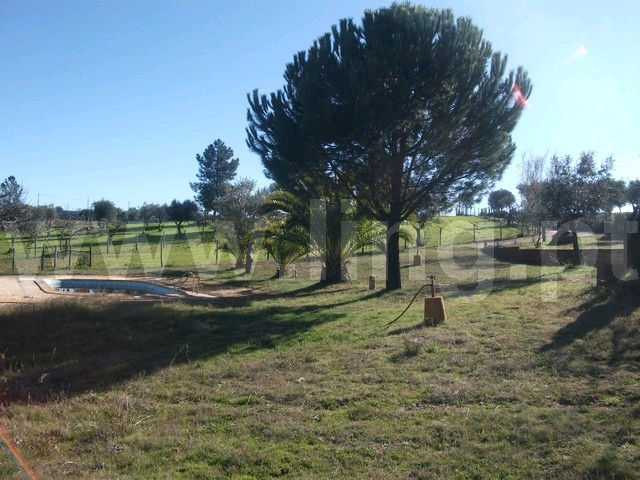 Quinta T2 Venda em Escalos de Baixo e Mata,Castelo Branco