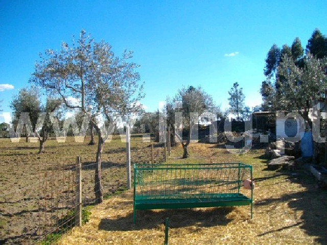 Terreno Rústico  Venda em Escalos de Cima,Castelo Branco